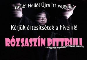Rózsaszín Pittbull zenekar