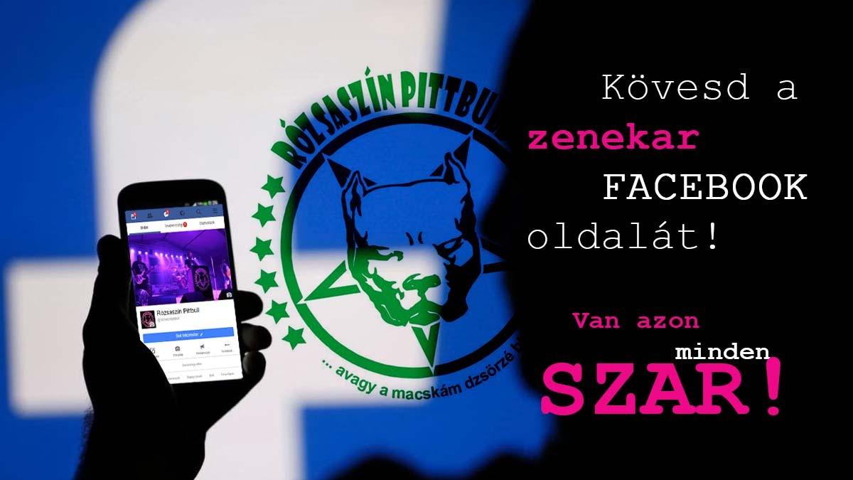 Rózsaszín Pittbull - Facebook